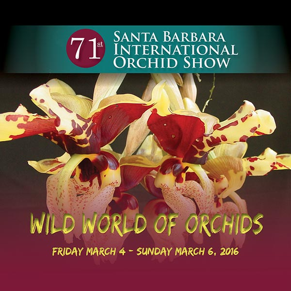 Santa Barbara 71st International Orchid Show